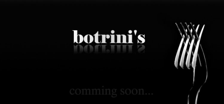 BOTRINIS PROJECT